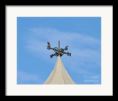 Windvane Framed Prints