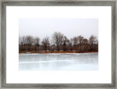 Framed Print featuring the photograph Stark Beauty by Mary McAvoy