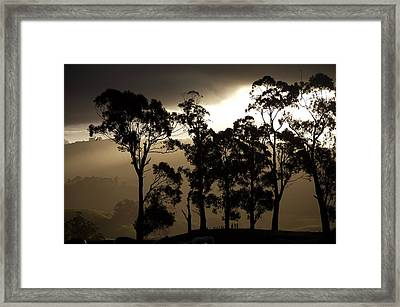 Stark Framed Print by Lee Stickels