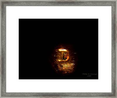 Statue Of Liberty Letter D Mint Mark Photo 8 Framed Print by Phillip H George