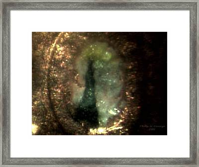 Statue Of Liberty Micro Photo 6 Framed Print by Phillip H George