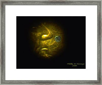 Statue Of Liberty Microscope Photo 1 Framed Print by Phillip H George