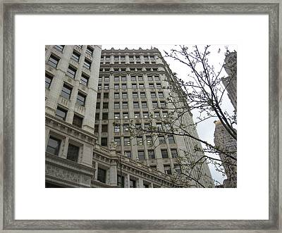Stature Framed Print