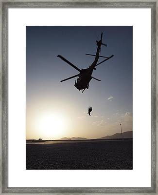 Staying Green Framed Print by Humberto Laviera