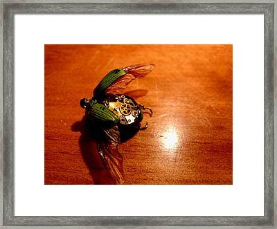 Steampunk Zayn Framed Print