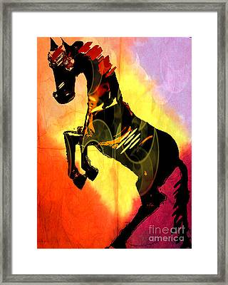 Steed 3 Framed Print by Amber Stubbs