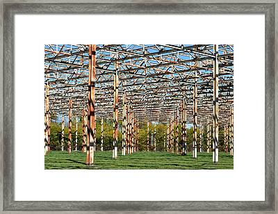 Steel Forest Framed Print
