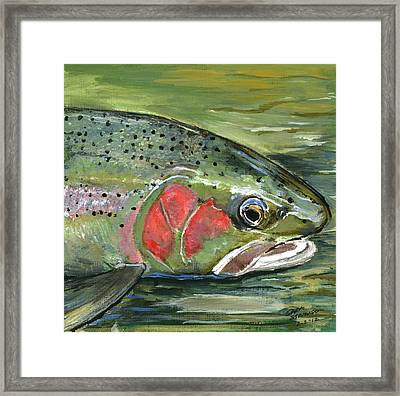 Steelhead  Framed Print