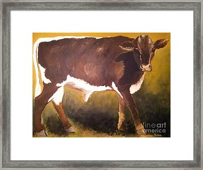 Steer Calf Framed Print