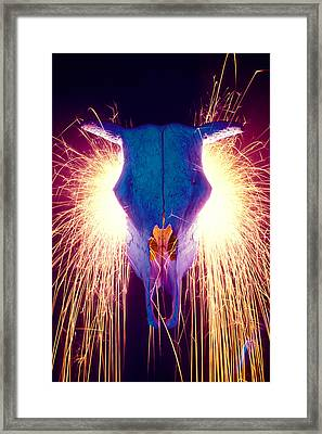 Steer Skull With Sparks  Framed Print by Garry Gay