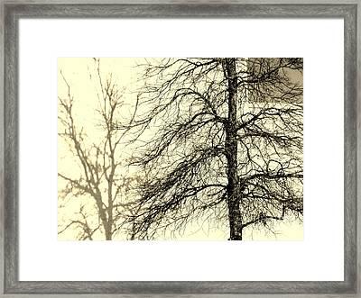 Steiglich Steichen And Pratt Framed Print by Joe Jake Pratt