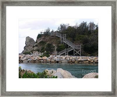 Step Up Framed Print by Joanne Kocwin