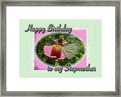 Stepmother Birthday Greeting Card - Butterfly On Flower Framed Print