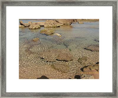 Stepping On The Plain Framed Print by Frances G Aponte