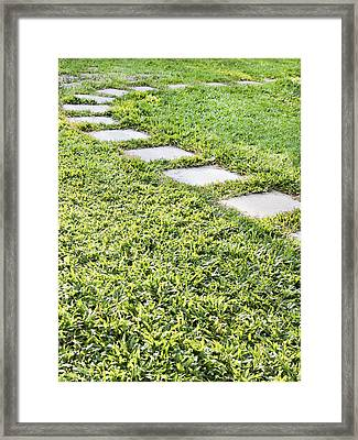 Stepping Stone Curved Path Framed Print by Kantilal Patel