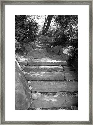 Stepping Stones In Black And White Framed Print by Rob Hans