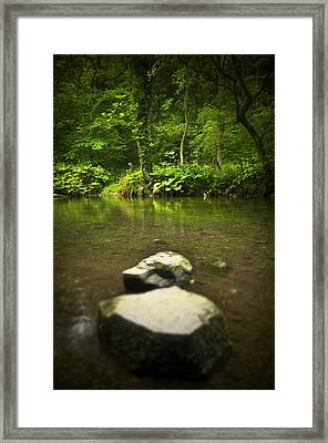 Stepping Stones Framed Print by Svetlana Sewell