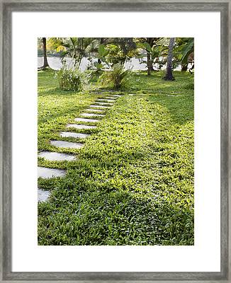Stepping Stones To Riverbank Framed Print by Kantilal Patel