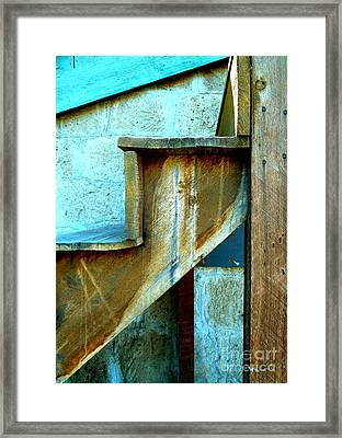 Framed Print featuring the photograph Stepping Up To The Blues by Newel Hunter