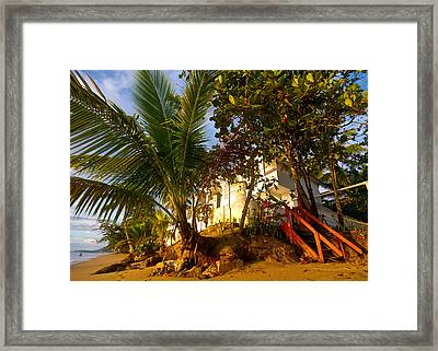Steps To The Beach Framed Print by Tim Fitzwater