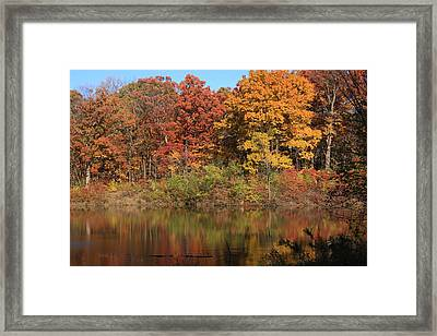 Sterling Pond Framed Print by Lyle Hatch