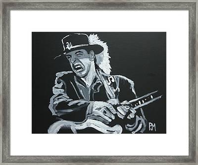 Stevie Framed Print by Pete Maier