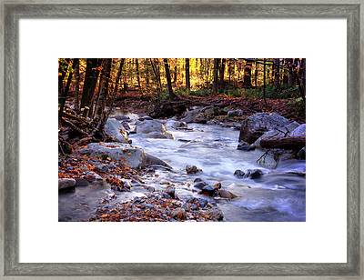 Framed Print featuring the photograph Stickney Brook by Tom Singleton
