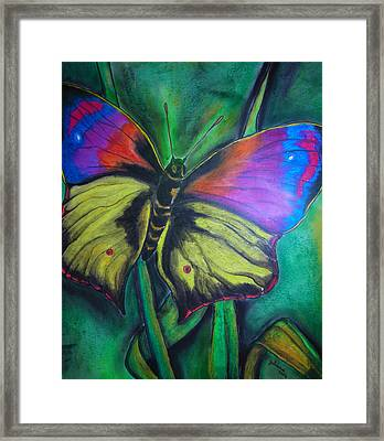 Still Butterfly Framed Print by Juliana Dube