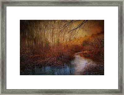 Still By The Stream Framed Print by Robin-Lee Vieira
