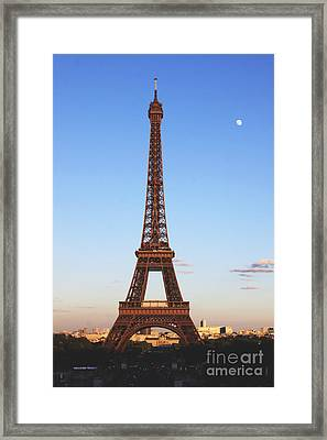 Still Erect Framed Print by Christopher Griffin