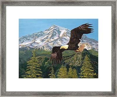 Still Flying High Framed Print