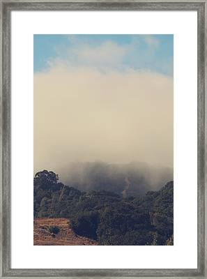 Still Hanging On Framed Print by Laurie Search