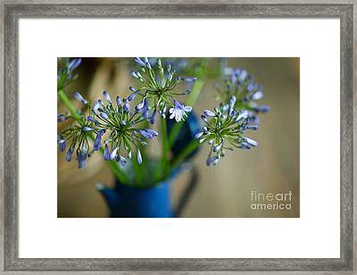 Still Life 03 Framed Print by Nailia Schwarz