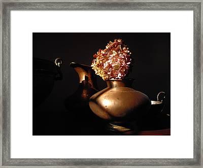 Still Life 1 Framed Print by Vilas Malankar