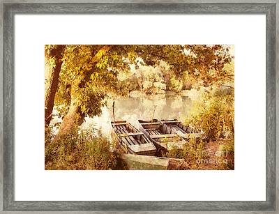 Still Life At The Lake Framed Print by Odon Czintos