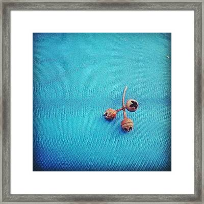 Still Life Composition 22092012 Framed Print