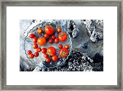 Still Life In The Nature Framed Print by Agusta Gudrun Olafsdottir