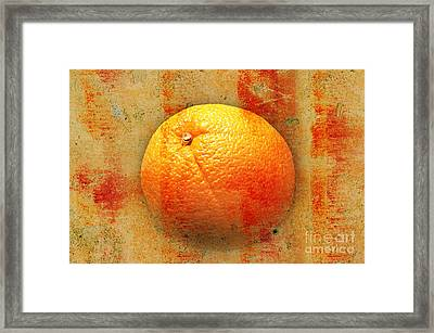 Still Life Orange Abstract Framed Print by Andee Design