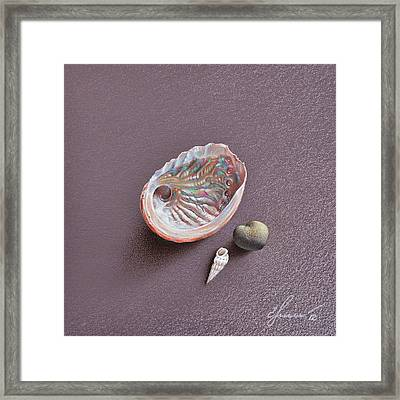 Still Life With Abalone Shell Framed Print by Elena Kolotusha