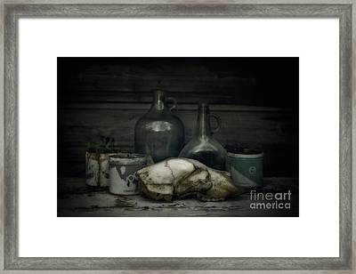Still Life With Bear Skull Framed Print by Priska Wettstein