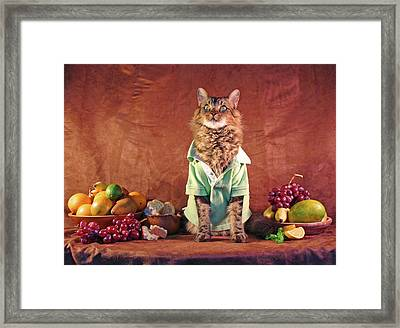 Still Life With Cat Framed Print by Joann Biondi