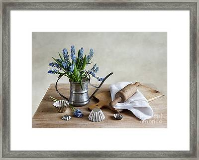 Still Life With Grape Hyacinths Framed Print by Nailia Schwarz