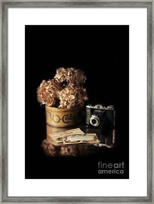 Still Life With Hydrangea And Camera Framed Print by Jill Battaglia
