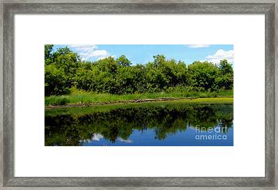 Framed Print featuring the photograph Still Water by Jim Sauchyn