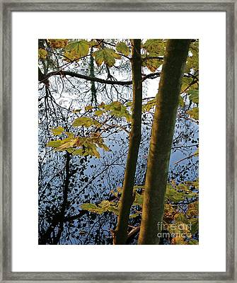 Still Waters In The Fall Framed Print by Andy Prendy