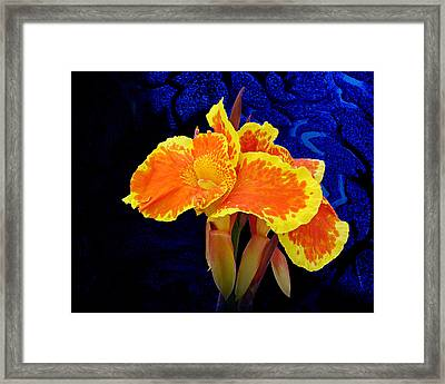 Stolen Moment Framed Print by Michael Taggart