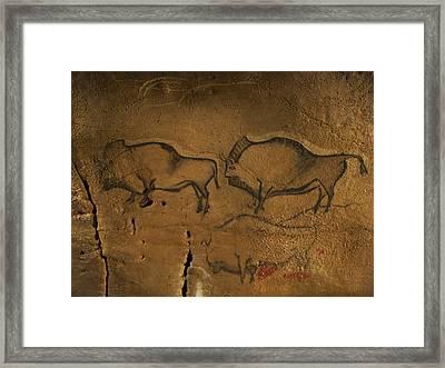 Stone-age Cave Paintings, Asturias, Spain Framed Print by Javier Truebamsf