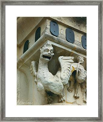Stone Beastie Framed Print by Diana Haronis