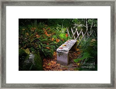 Stone Bench Framed Print by Carlos Caetano