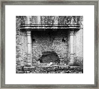 Stone Cold Framed Print by Georgia Fowler